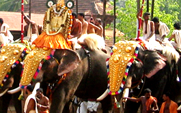 Tours to South India